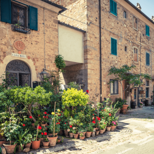 tuscan-guided-tours_bolgheri-03