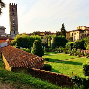 tuscan-guided-tours_lucca-03