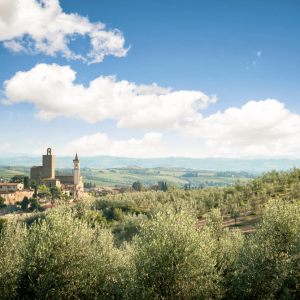 tuscan-guided-tours_vinci-01